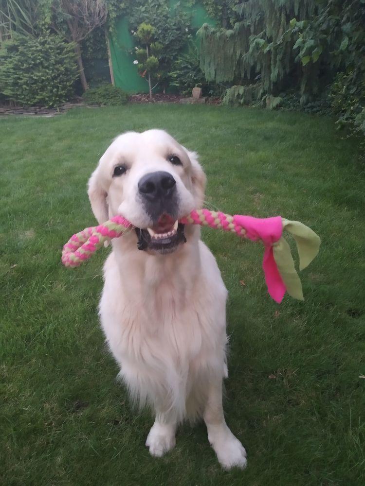 Hračka - spletený cop - růžový