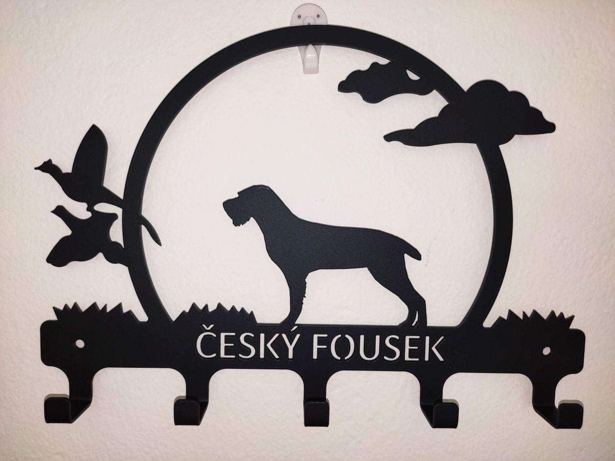 Věšáček - český fousek