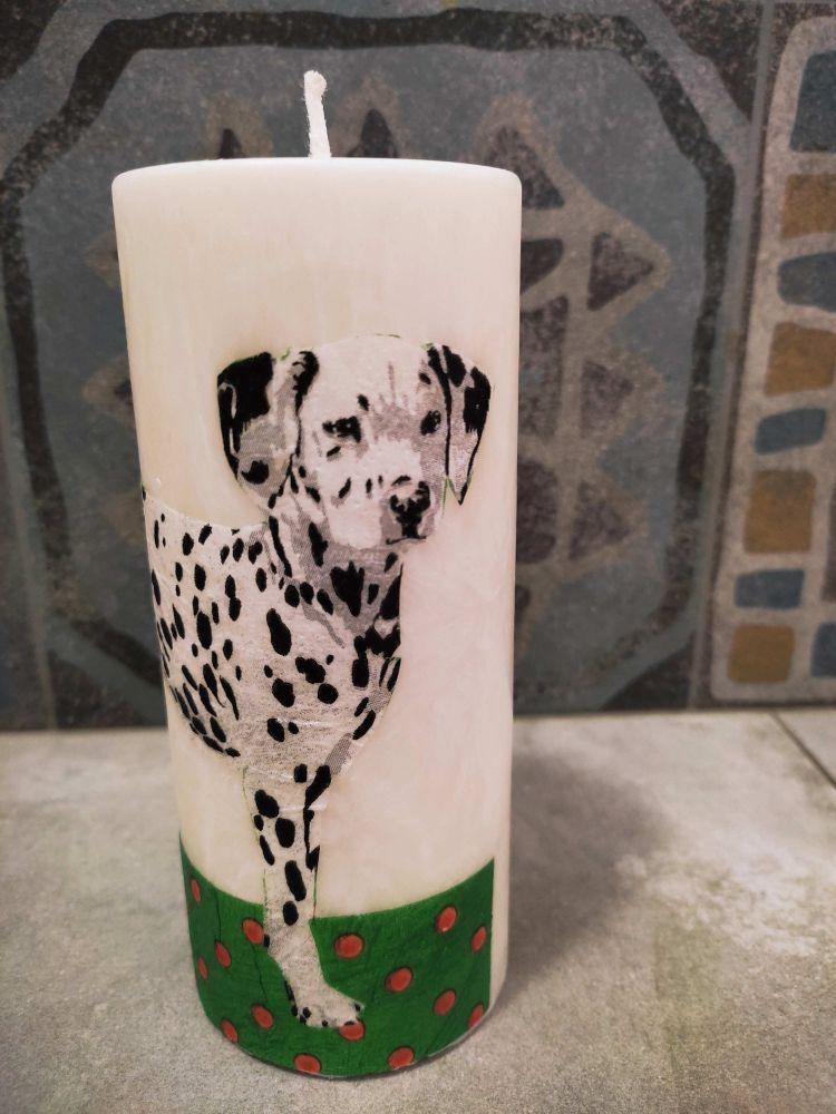 Svíčka - dalmatin